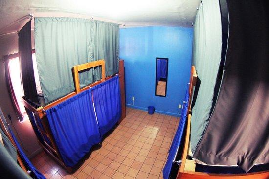 Blue Pepper Hostel: 6 bed mix dorm Blue Pepper