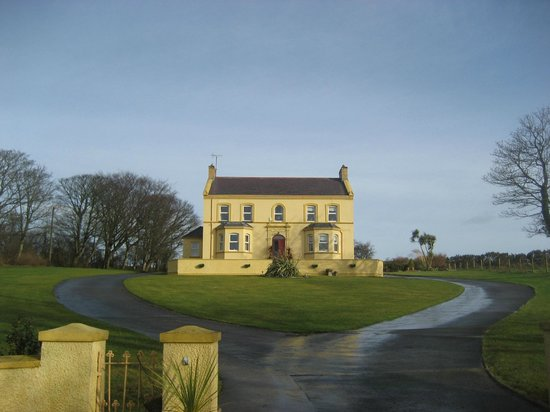 Bocan Stone Circle: Directly behind this house