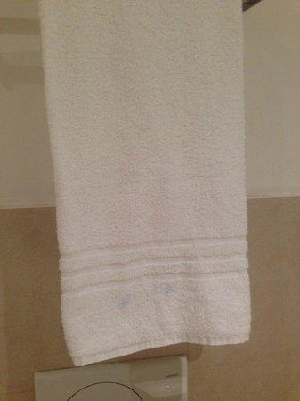 Hotel Aniene: Macchie sull'asciugamani
