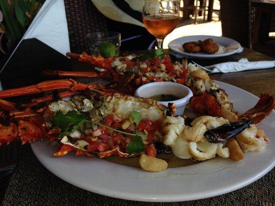 Ocean Grill Restaurant & Beach Club: fresh grilled lobster