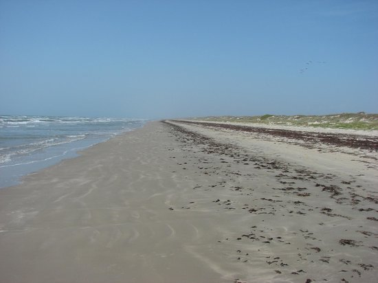 Padre Island National Seashore: No one in sight - total solitude