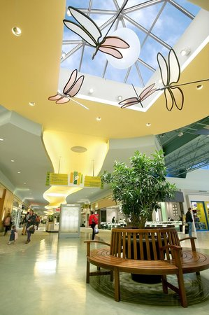Eastgate mall is your typical hometown mall. Teenagers are there A LOT just to chill, and there are no high end stores (Dillard's doesn't count, that's a department store.) If you're from out of town and you want to experience the /5(34).