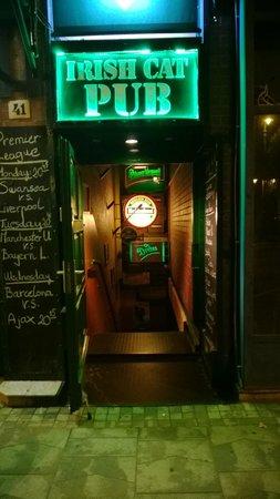 Irish Cat Pub: Trappan ner