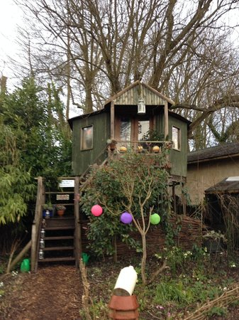 Fanny's Farm Shop: The treehouse