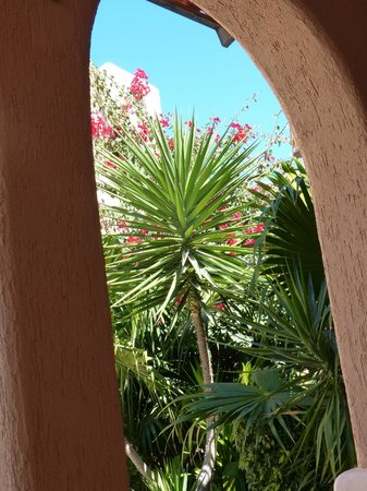 Casa Kootenay Bed and Breakfast: Inside courtyard view
