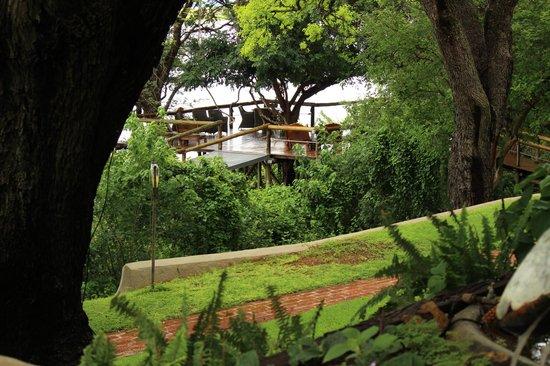 Chobe Game Lodge : vista da struttura