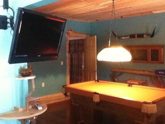 Robinwood Inn: Treetop Loft downstairs - pool table!~