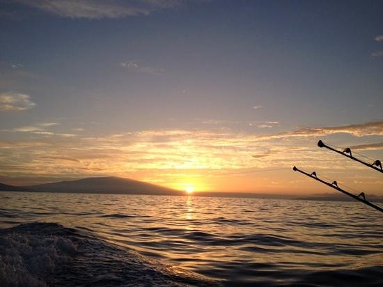 Finest Kind Sportfishing : It doesn't get any better than this! Sunrise surprise!