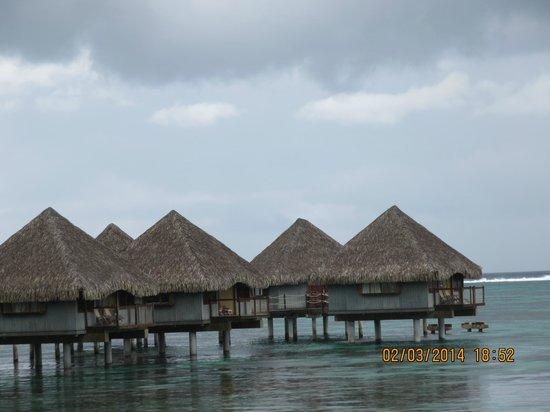 Le Meridien Tahiti: Hotel Bungalo's