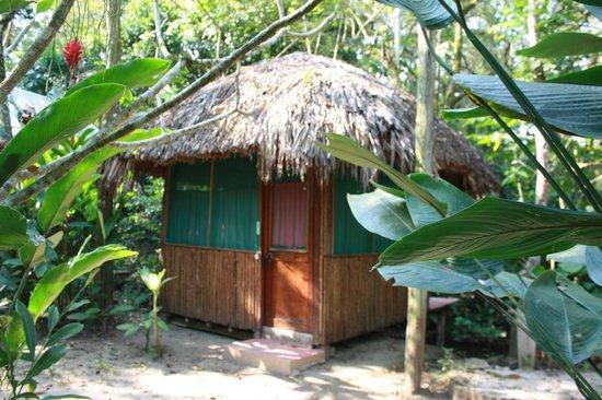 Jungle Palace: Our little hut