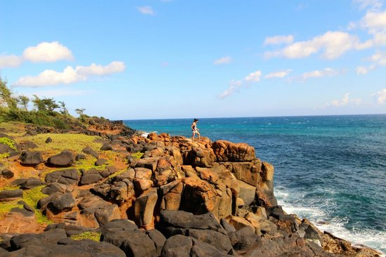 Kauai Path: don't forget to get off the path to explore!