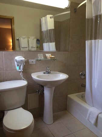 Hotel Versey Days Inn by Wyndham Chicago: Bathroom