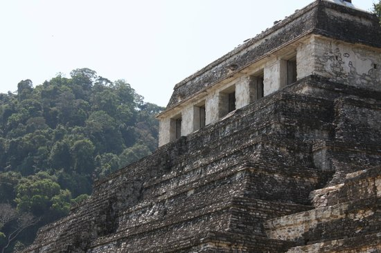 Palenque ruinas : can't climb this one :- (