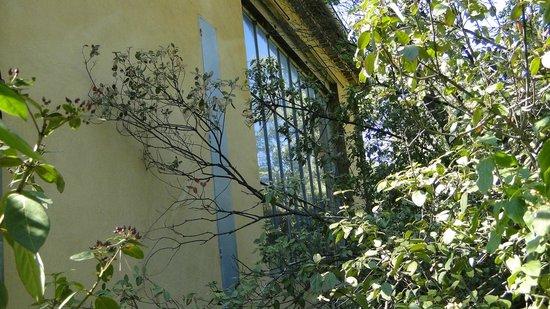 Atelier Cezanne: Muita luminosidade