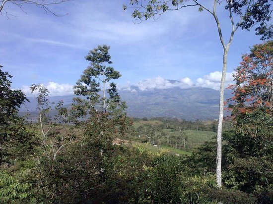 Finca Integral Dikla: Vue sur le volcan Turialba.