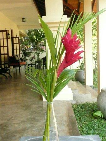 Suhada Villa: Garden Terrace