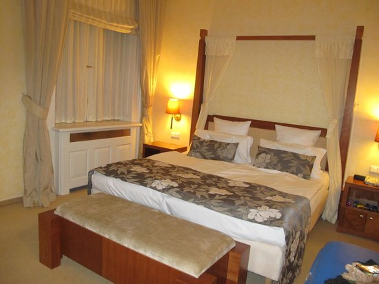 Ventana Hotel Prague: Superior Room