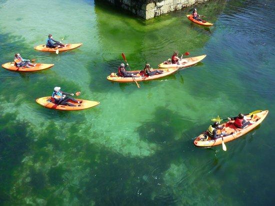 Lizard Adventure - Day Tours: Mullion Harbour
