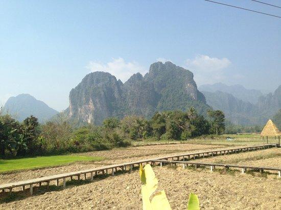 Vieng Tara Villa: View from our room