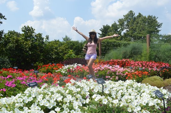 Missouri Botanical Garden : Beauty in the Garden