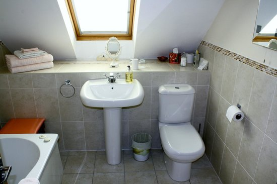 Ysbyty Ystwyth, UK: Private bath/shower room.
