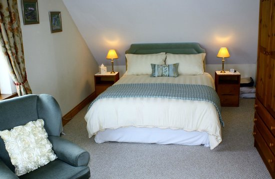 Ysbyty Ystwyth, UK: The Green Room, family with private bath/shower.