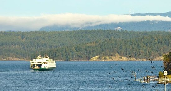San Juan Suites: View of the Friday Harbor Ferry & Brown Island