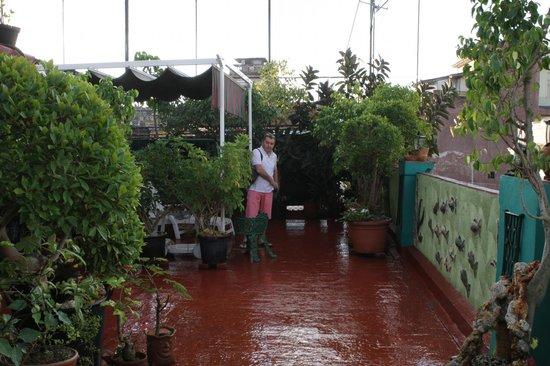 """Hostal Chez Nous La Habana Cuba: Terrasse Casa """"Chez Nous"""", en face de notre chambre"""