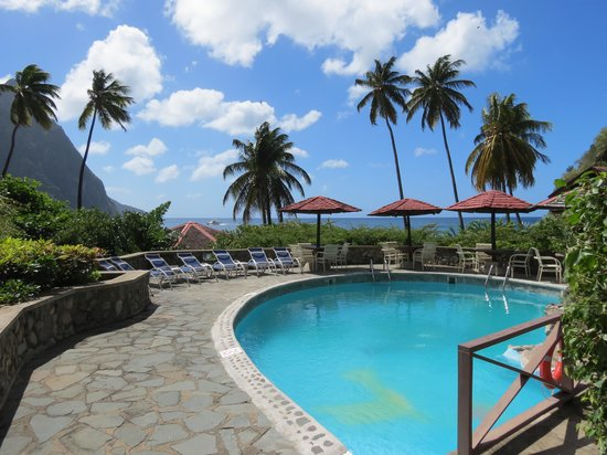 Hummingbird Beach Resort : Pool side