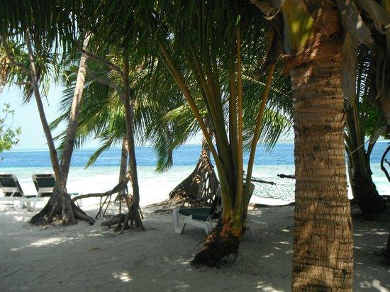 Vilamendhoo Island Resort & Spa : spiaggia lato nord
