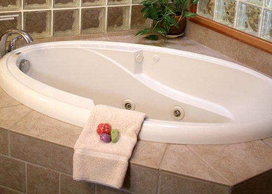 San Juan Suites : Jetted Bath Tub - The Conserventory - Pet Friendly