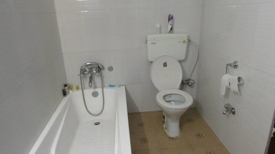 Hotel View Point: the toilet.....YES!!!  IT FLUSHES!!!!!