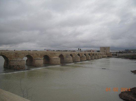 Hotel Macia Alfaros : puente romano,cordoba