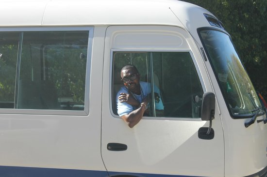 Island Paradise Tours : Great, clean buses!