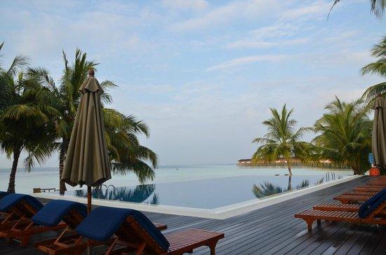 Vilamendhoo Island Resort & Spa : Piscine