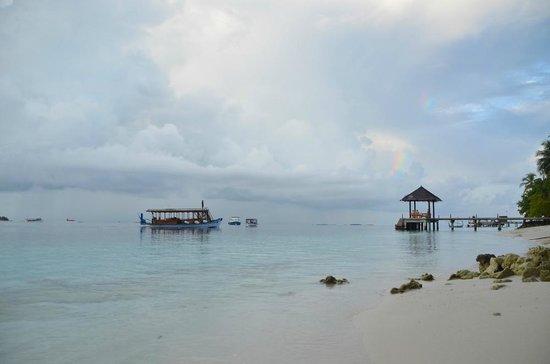 Vilamendhoo Island Resort & Spa : Matinée