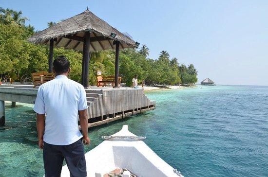 Vilamendhoo Island Resort & Spa : Arrivée