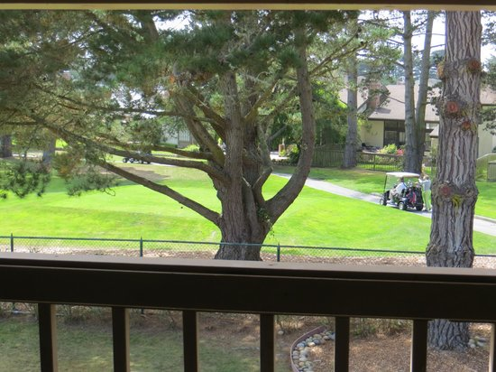 Half Moon Bay Lodge : view