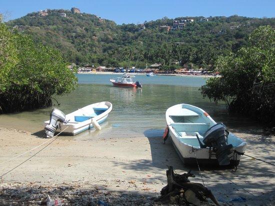 Playa Las Gatas: From Los Gatos la playa