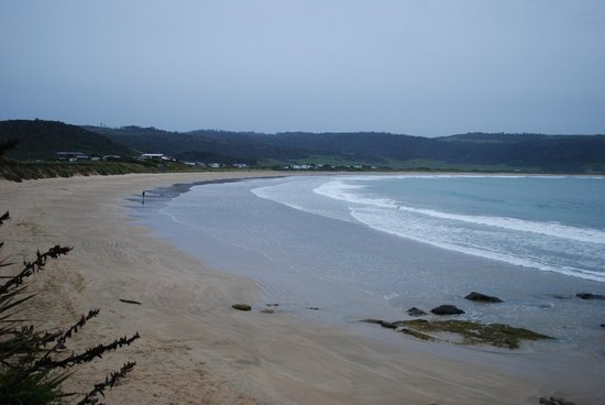 Curio Bay Natural Heritage Centre: Huge sandy beach and dolphins
