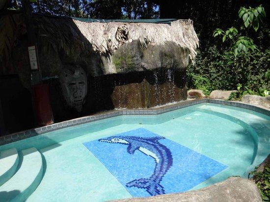Cariblue Hotel : Piscina pequeña
