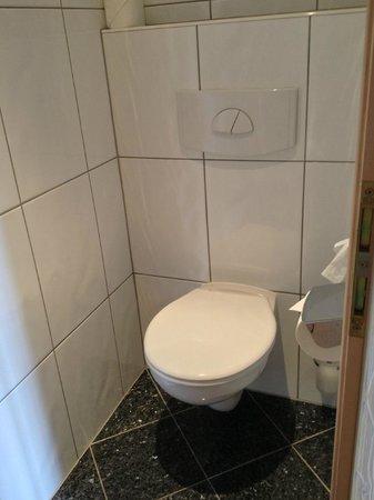 Hotel Brigitte: Туалет