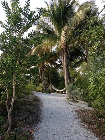 Naples Botanical Garden: an inviting place to rest