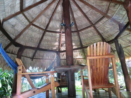 Hotel Banana Azul: Hangout
