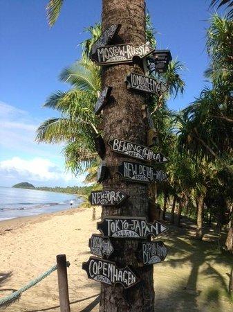 Uprising Beach Resort : Пальма с табличками расстояний до основных городов мира