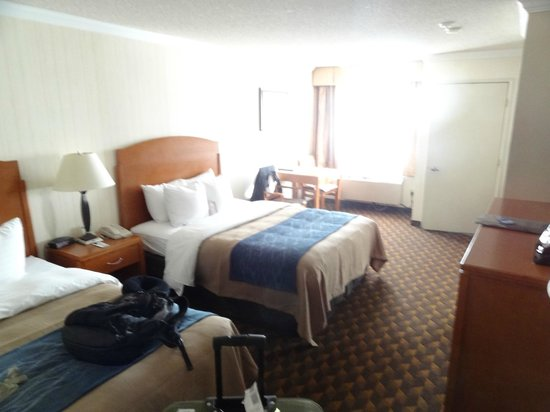 Comfort Inn & Suites LAX Airport: O quarto