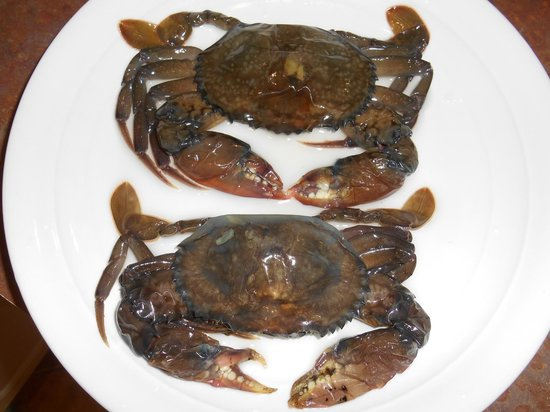 Flowers Seafood Company: Asian Mud/Mangrove Crabs