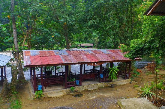 Rainforest Guesthouse: RainForest - eating area by river