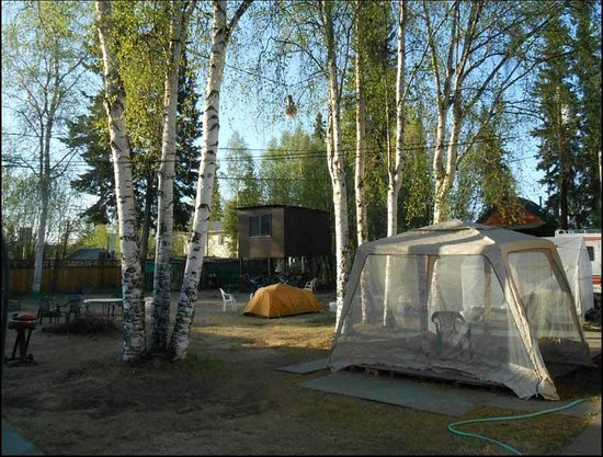 Glacier House Hostel : Summer morning with tents