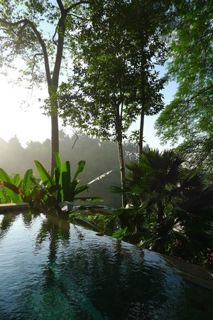 Uma by COMO, Ubud: Looking out from our Room